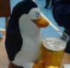 Пингвин и пиво
