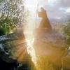 The Hobbit - Gandalf v.1
