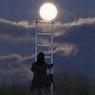 a hold felé