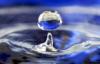 dropinsea userpic