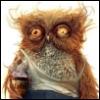 owl_dairy userpic