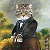 кот-джентльмен