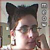 Photo - Meow