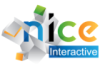 NICE Interactive