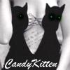 Black Kitty Lingerie
