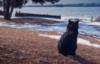 lelya_lendel userpic