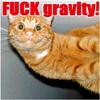 fuck-gravity