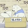 Polar Bear (In a Box)