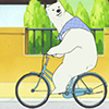 Polar Bear (Source: My Bike)