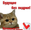 tanya_bevz