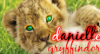 daniellek99 userpic