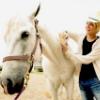tego&horse