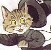 shadowycat: Catwitch