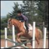 jumping is fun