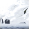 Kiba - Lying in the Snow, noble, sorrowful, exausted