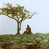 Brontë - Heathcliff