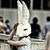 new rabbit girl