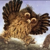 f_owl_er