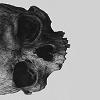 chastegardener userpic