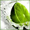 Bambu: Edibles A Splash of Lime