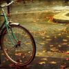 осень. велосипед