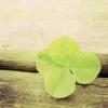 xiia0chloe userpic