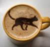 кофе, кошка, украшения
