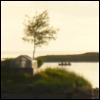 alla_krikun userpic