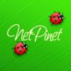 netpinet userpic