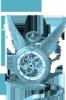 steamsparrow