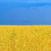 ukraineasis userpic