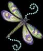 dragonflybeach