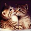 leshan_k userpic