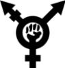 трансфеминизм, транссексуальность, феминизм, трансгендерность