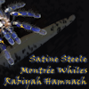 arachne enterprises 04-07-13 A