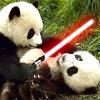 """Laura, aka """"Ro Arwen"""": Panda - Light Saber"""