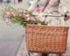 флористика, цветы