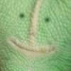 улыбака