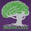 brainclassru userpic