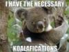 коалафикация