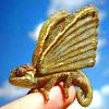 Gold Fairy Lizard