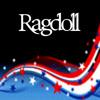 ragdoll230: #10