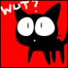 cat black meow wut
