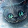 cat smile