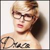 welcome to villa cariño!: Draco [glasses]