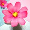 лепка цветов, Deco-magic, молды, каттеры, керамическая флористика