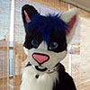 fursuit maho cat gato
