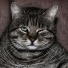 plegaria userpic