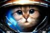 spacetimer userpic