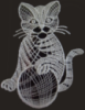 котик кружевной
